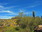 Title: Spring on South Mountain