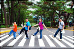 Title: Crossing The Abbey Road of Pine TreesNikon D40X
